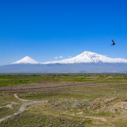 3581 - Cultures et traditions en pays Caucase - 1