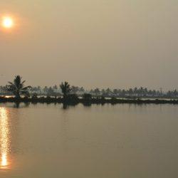3542 - Ayurvéda au Kondai Lip Backwater Resort - 1