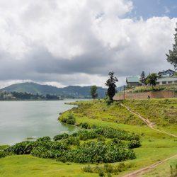 3634 - Le Sri Lanka à petit pas - 1
