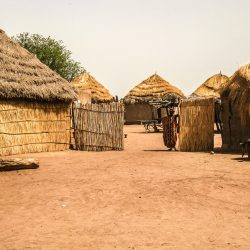 3515 - A la découverte du Sénégal autour des projets d'ICD Afrique - 1