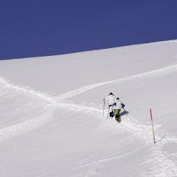PROGRAMME QTOUCG RAQUETTE CHARTREUSE snow-3062743_1920
