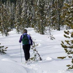PROGRAMME QTOUCG RAQUETTE CHARTREUSE snow-shoeing-1393045_1280