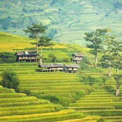 3621 - La Birmanie des temples et des villages - 1