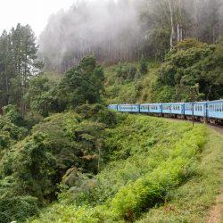 3693 - Sri Lanka Express - 1